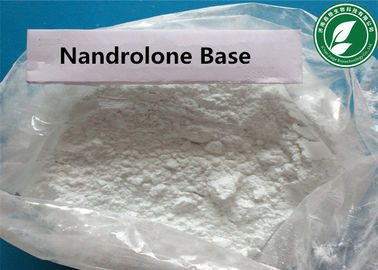 China Anabolic Steroid Powder Nortestosterone Nandrolone Base CAS 434-22-0 supplier
