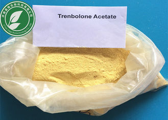 China Anabolic Steroid CAS 10161-34-9 Trenbolone Acetate For Fat Loss supplier