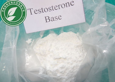 Steroid Powder 99% Testosterone Base For Muscle Building CAS 58-22-0