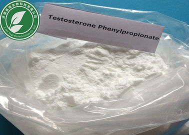 Bodybuilding Steroid Powder Testosterone Phenylpropionate With 99%
