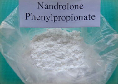 White Steroid Powder Nandrolone Phenylpropionate With Safe Ship​