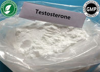White Steroid Powder Testosterone Base For Muscle Mass Cas 58-22-0